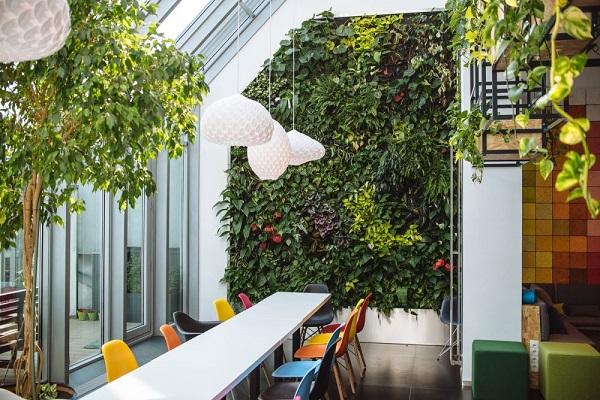 jardins verticais em escritorios Skyscanner-–-Budapest-Offices