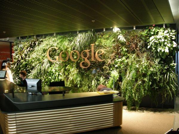 jardins verticais em escritórios _Google