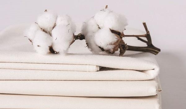 quarto mais sustentável algodão orgânico