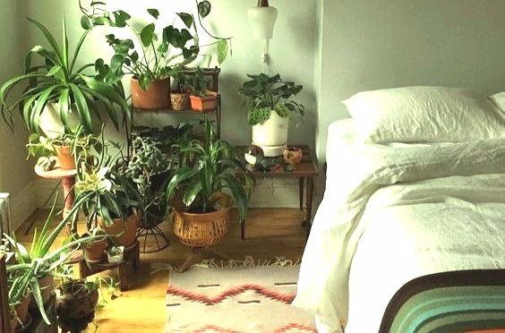 quarto mais sustentável