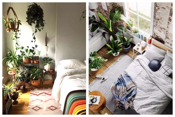 quarto mais sustentável com plantas vivas