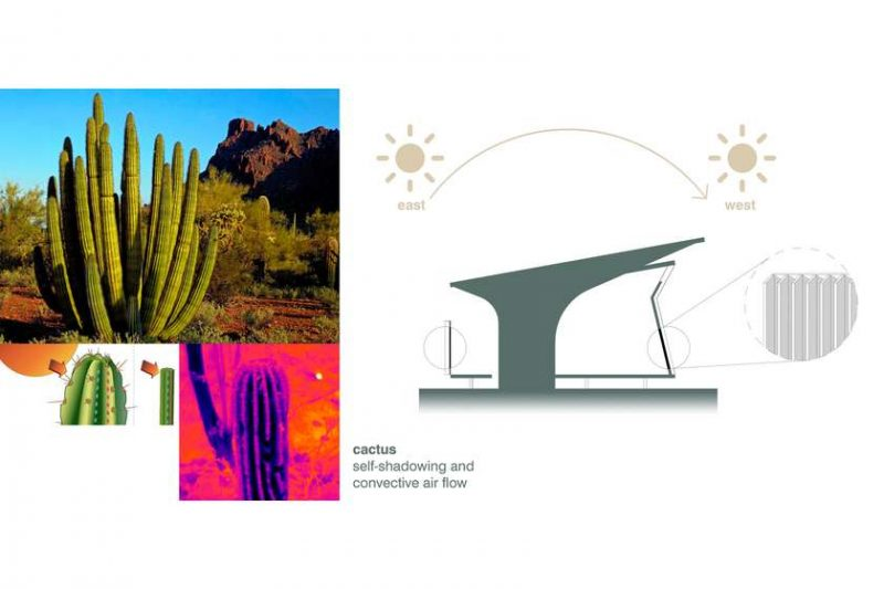 biomimética arquitetura votu hotel