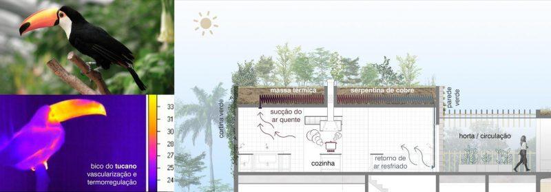 biomimética arquitetura votu hotel tucano